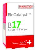 stress fatigue